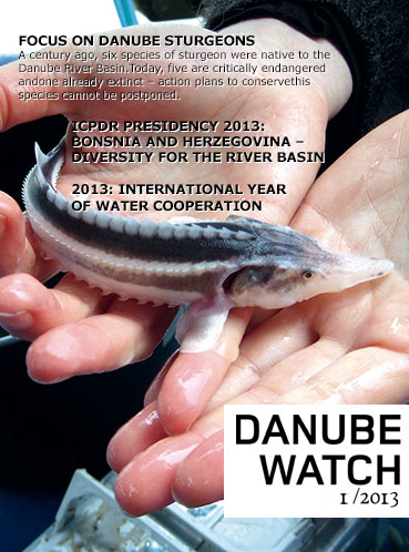 Danube Watch 1/2013